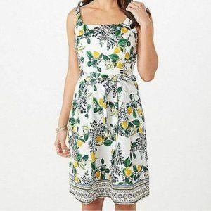 Roz & Ali A-Line Dress Lemon Floral Print Size 14